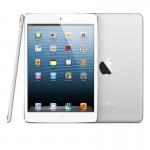 初代iPad miniでディズニーランドのワンスアポンアタイムは撮影できるか?